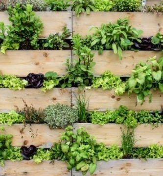 Cómo hacer un jardín vertical casero y barato