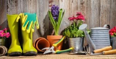 Nombre de Herramientas y accesorios de jardineria profesional.jpg