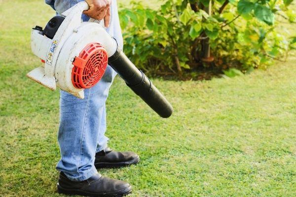 Soplador de  hojas para jardineria.jpg